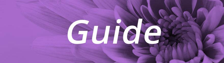 Guide Développement créatif